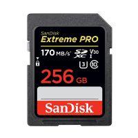 闪迪(SanDisk) 256G 高速存储卡 U3 170MB SDSDXXG-256G-ZN4IN