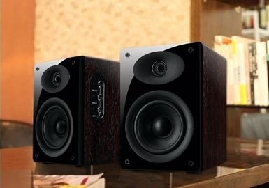 *惠威(Hivi)多媒体音箱 D1010 MKII 2.0声道   玫瑰木色